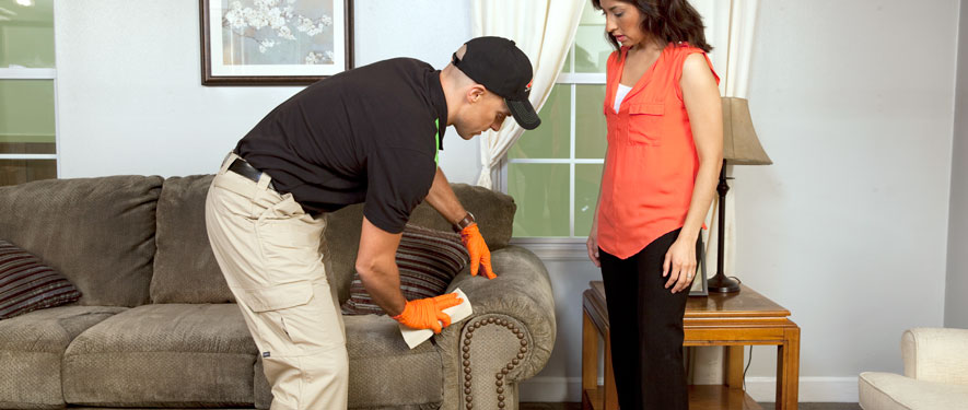 Hawthorne, CA carpet upholstery cleaning